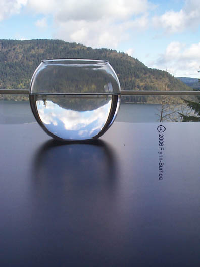 Fishbowl reflections