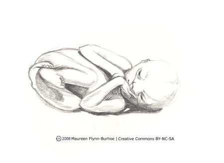 Pentel Portrait of Plastinated Foetus